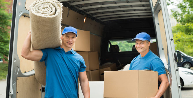 Driver/Warehouse Assistant